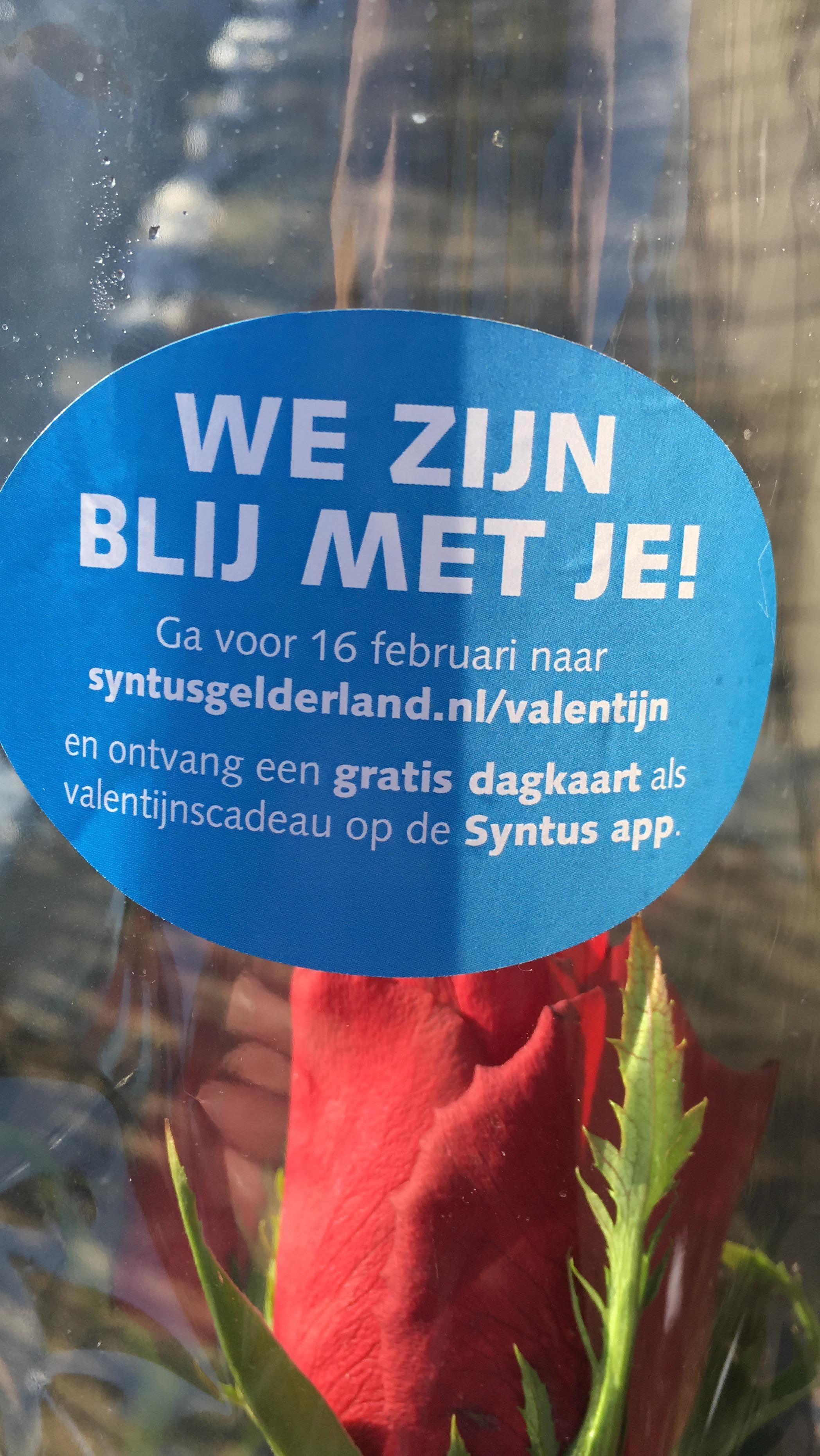 Dagkaart om gratis te reizen @Valentijn bij Syntus