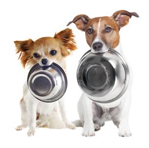 Gratis stoommaaltijd voor de hond van Smolke