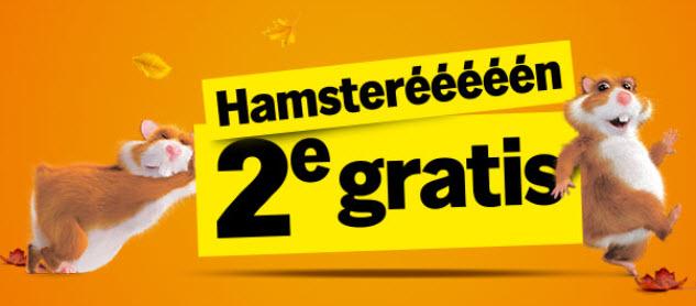 Vorige en deze week Hamstereeeeeeen @ Albert Heijn