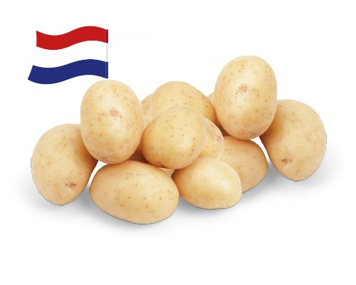5 kilo kruimige aardappelen voor €1 @ Aldi