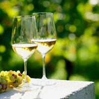 €20,- korting bij Wine in Black met deze waardeboncode: PE8679AP