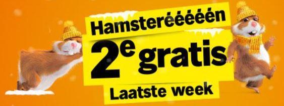 [VERLENGD] Laatste week Hamsteréééééénnnn @ Albert Heijn