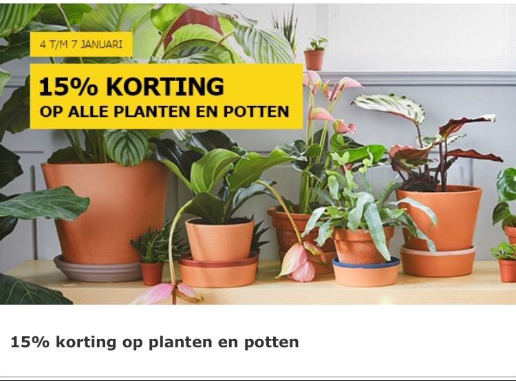 15% korting op planten en potten IKEA
