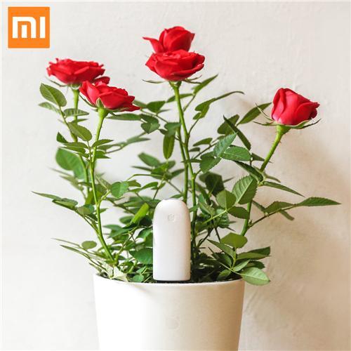weer voorraad IOT: Xiaomi Mi plant/bloemen sensor bluetooth (meet water, licht, temp en voeding). via geekbuying.