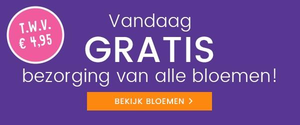 Hallmark gratis verzending op bloemen t.w.v. € 4,95 + gratis kaart (16 & 17 januari)