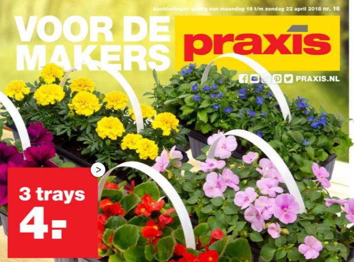 Plantjesmarkt: 3 trays (= 30 stuks) perkgoed €4 @ Praxis