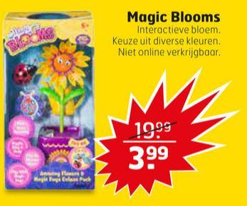 Vanaf 08/05: Magic Blooms voor €3,99 @ Trekpleister