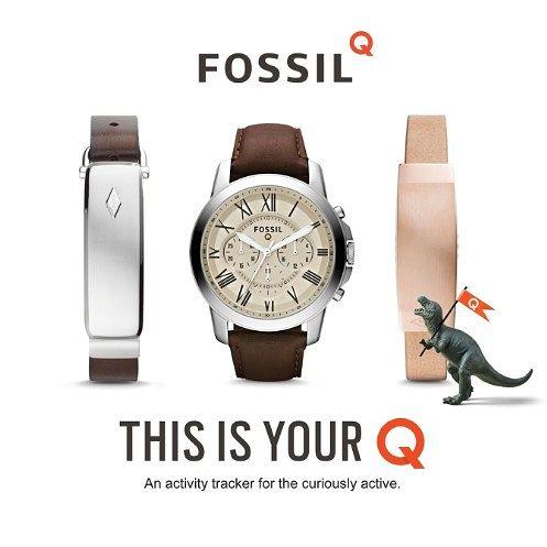 Fossil Q Hybrid FTW1118