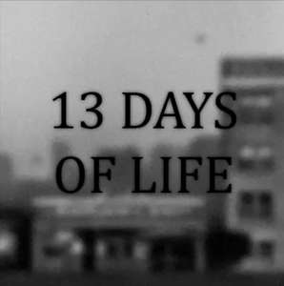 Gratis - 13 Days of Life