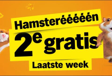 Laatste week Hamsterééééén 2e GRATIS @ Albert Heijn
