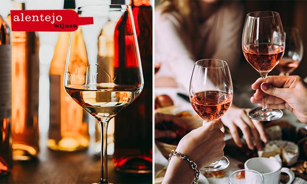 12 Flessen wijn