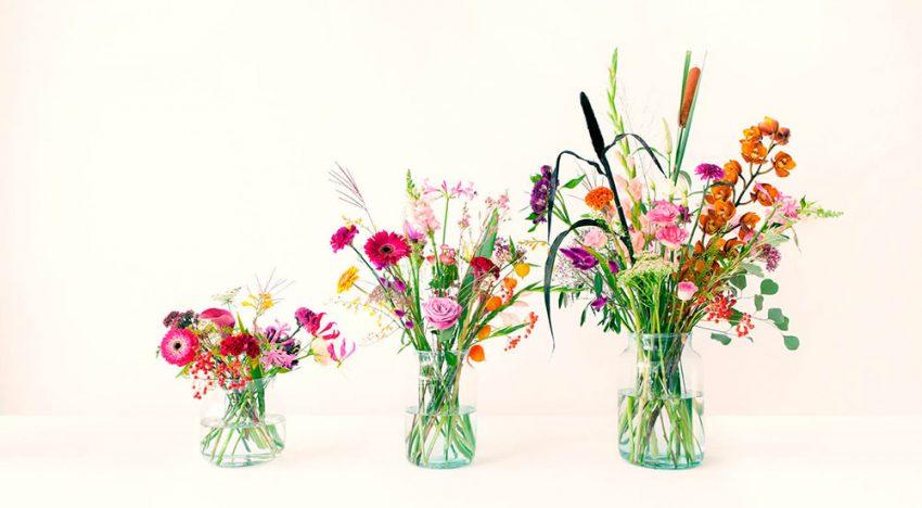 Bloomon - medium bos + gratis vaas + gratis verzending