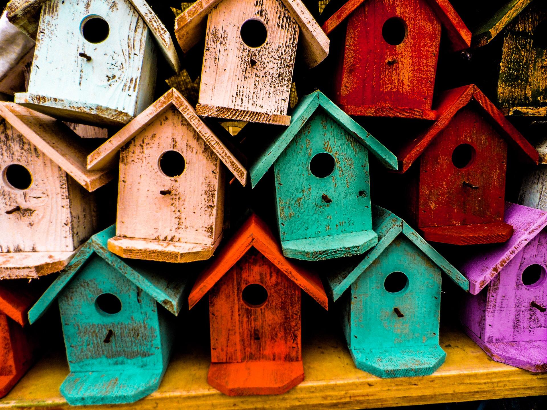 Gratis nestkastje voor mezen in Hardenberg