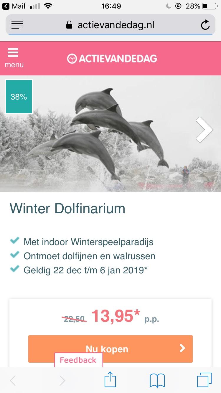 Winter Dolfinarium