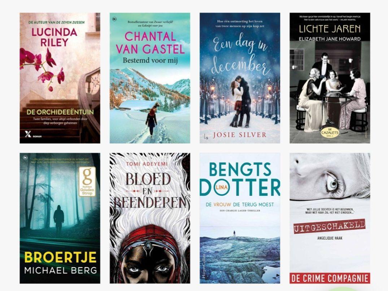 Via nieuwsbrief AH,  8 e-books en audiobooks cadeau bij bookchoice
