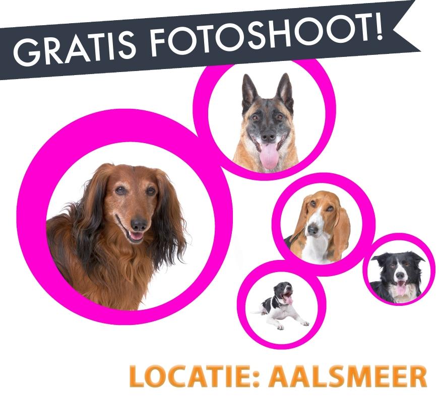 Gratis fotoshoot voor honden (max 2 honden 1 foto per hond)