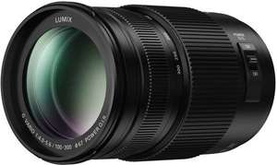 Panasonic Lumix G Vario 100-300mm f/4.0-5.6 II @bol.com - Elders 499, -