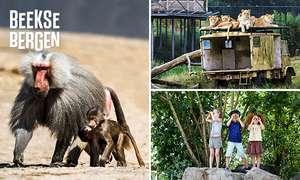 Safaripark Beekse Bergen met 40% korting