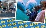 [Black Friday] Dolfinarium tickets voor €9,99 per stuk