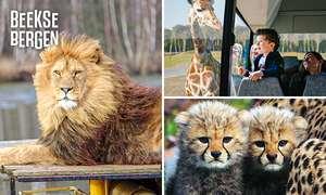 Safaripark Beekse Bergen voor € 14,95