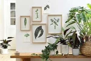 Gratis A4 botanische plantenprent @Intratuin