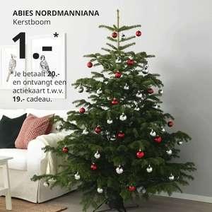 Nu 1+1 kerstbomen actie voor €1.-*