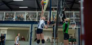 Gratis (volleybal) Nevobo-webinars