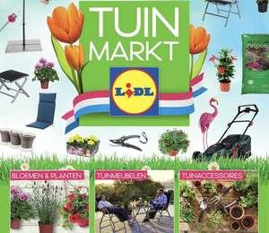 [Lidl] Tuinmarkt 2021