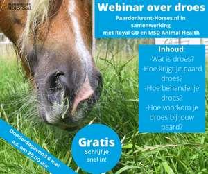 Gratis Webinar over Paardenziekte Droes