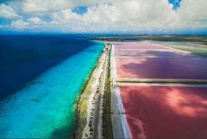 Last minute: 9-daagse tropische vakantie op Bonaire inclusief KLM vluchten en verblijf. Prijs p.p. op basis van 2 personen