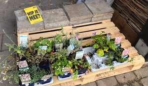 [LOKAAL] Gratis plantjes bij de Stadsboerderijen [Arnhem]