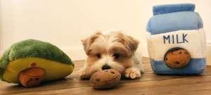 30% korting Uncle Percy Pet Boutique dierenwinkel voor honden en katten