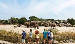 Safaripark Beekse Bergen + 2 nachten in Van der Valk hotel incl. ontbijt vanaf €125 p.p.