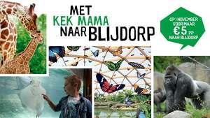 Op 1 november voor € 5,70 p.p. naar Diergaarde Blijdorp Dierentuin
