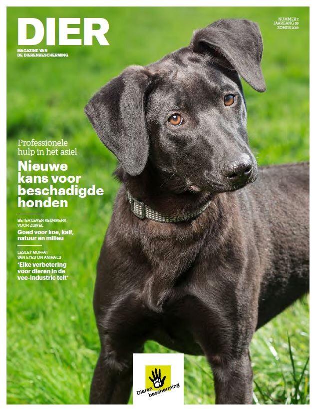 Gratis magazine Dier (Dierenbescherming)