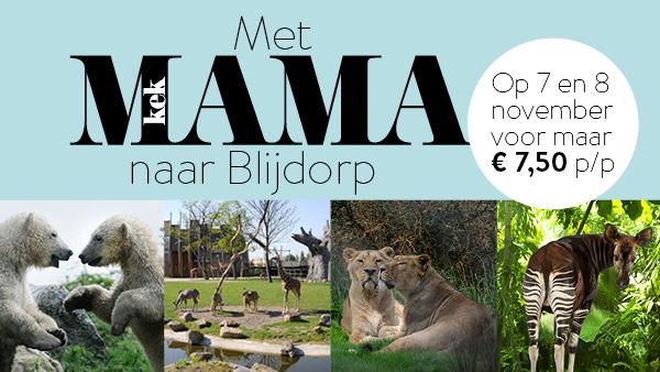 7 en/of 8 november Diergaarde Blijdorp voor €8,20