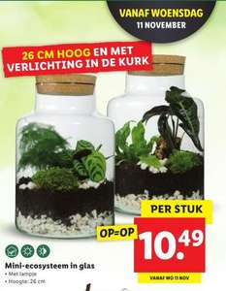 Mini ecoysteem Lidl €10,49 - (vanaf) 11 nov