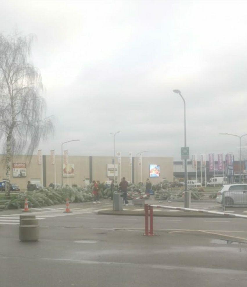 Gratis kerstbomen ikea Breda (lokaal)