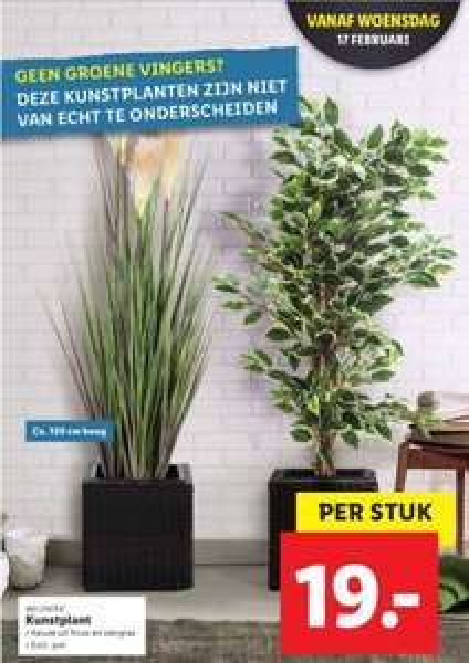 LIDL kunstplant 120cm vanaf 17 februari