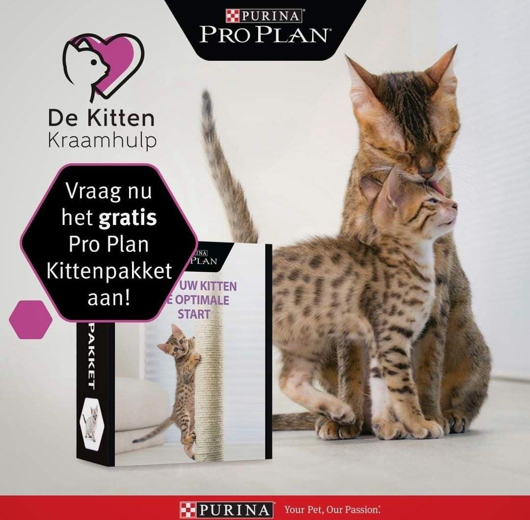 Gratis Purina pro kitten pakket 0a 1,5kg brokken