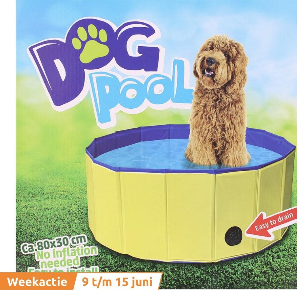 Honden zwembad (action week actie)