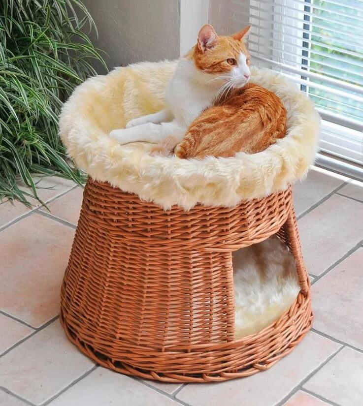 SILVIO DESIGN katten schuil- en ligplaats van €49,99 naar €29,99 @ Lidl-shop