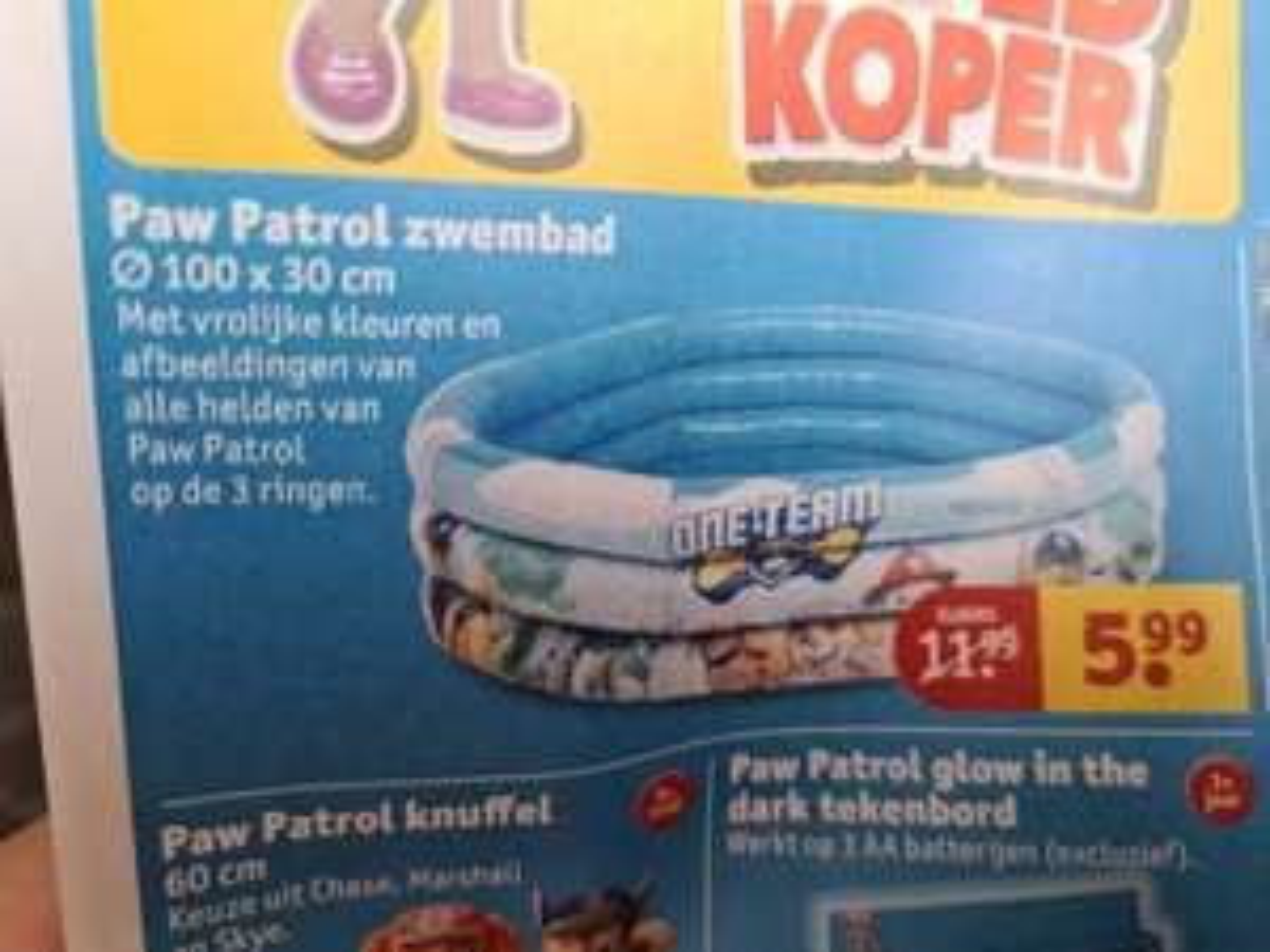 Paw patrol zwembad