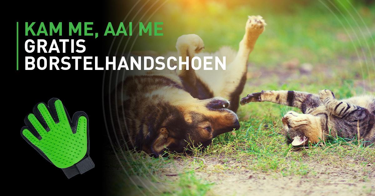 (ENKEL BELGIË) Gratis vachtverzorging handschoen hond/kat