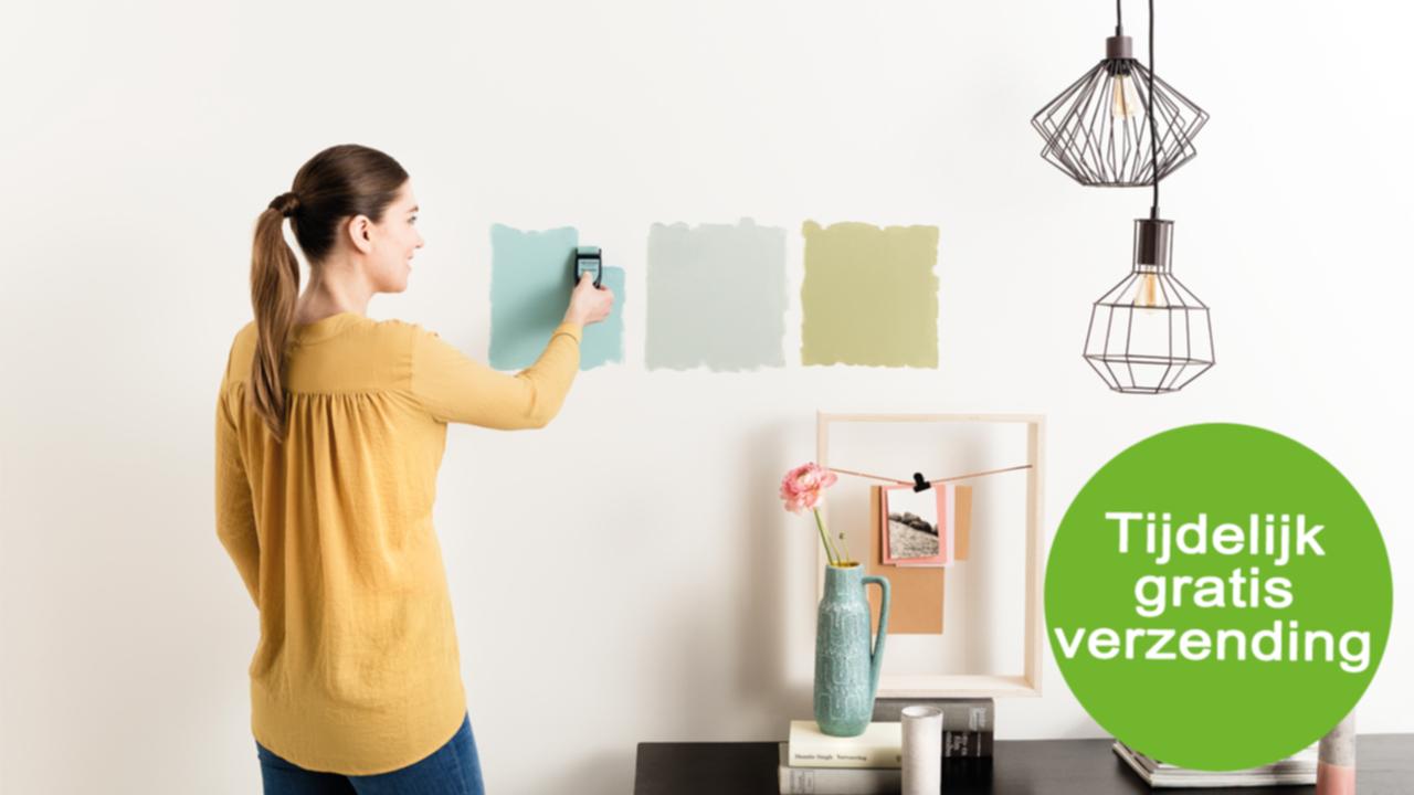 Gratis Flexa Kleurtester dmv code &  Tijdelijk gratis verzending